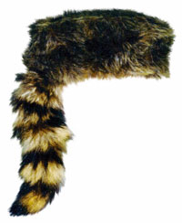 The preferred headgear of patriotic frontiersmen and plain-spoken politicians such as Davy Crockett, the �King of the Wild Frontier�.